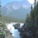 Die Athabasca Falls in den Rockie Mountains